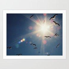 fly into the sun Art Print