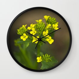 Wintercress Wildflowers Wall Clock