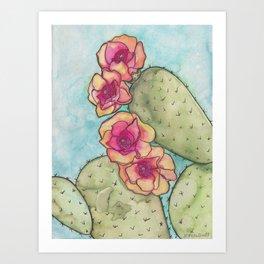 Prickly Pear Watercolor Illustration  Art Print