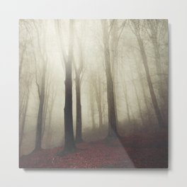 woodland whispers Metal Print