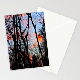 Sunset Through the Tangled Trees Stationery Cards