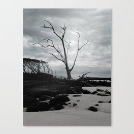 Blackrock Canvas Print