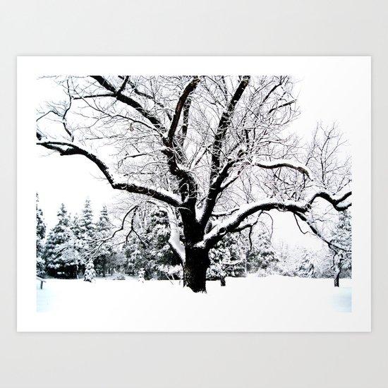 Snow Tree Art Print