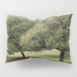 Hillcountry Bluebonnets Pillow Sham