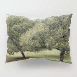 Hillcountry Bluebonnets Pillow Sham