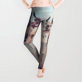 ALPACA ALPACA ALPACA Leggings