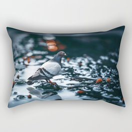 Gracious Magnificent Pigeon Solo On Lonely Wet Autumn Road Ultra HD Rectangular Pillow