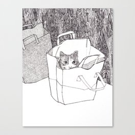 In the bag Canvas Print