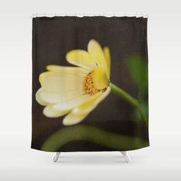 Hello, Goodbye Shower Curtain