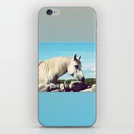 Connemara Pony 2 iPhone Skin