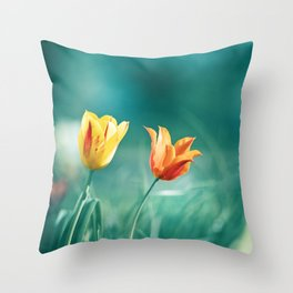 Teal Orange Throw Pillows For Any Room Or Decor Style Society6