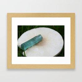 indicolite tourmaline chillin on a mushroom ~ Framed Art Print