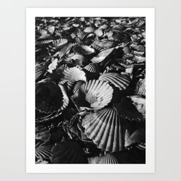 Shell-shocked Art Print