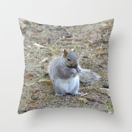 Gray Squirrel Munching on Pine Cones Throw Pillow
