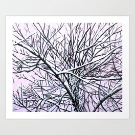 Hoarfrost Tree Art Print