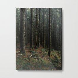 Gorge Woods Metal Print