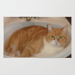 Cats love sinks! Rug