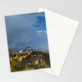 Natural Bonsai Stationery Cards