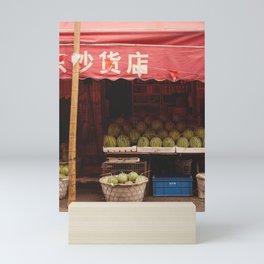 The watermelon shop Mini Art Print