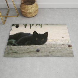 Black Kitten Playing with Olives Rug
