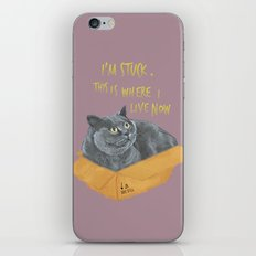 Boxcat iPhone & iPod Skin