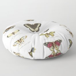 Vintage Butterfly Chart Floor Pillow