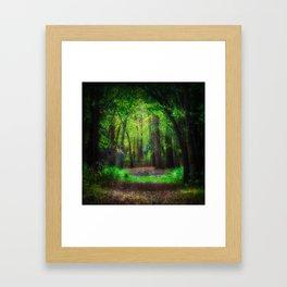 Fall Splendor 2 Framed Art Print
