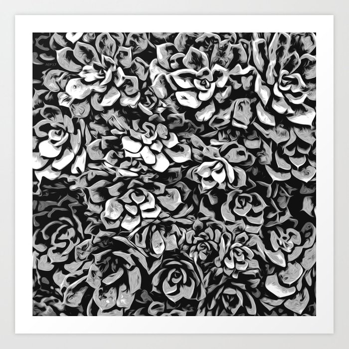 Plants of Black And White Art Print