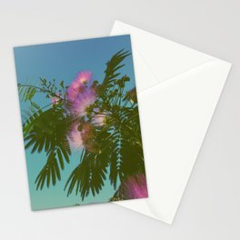Mimosa Tree in Bloom Stationery Cards