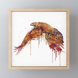 Flying Hawk Watercolor Painting Framed Mini Art Print
