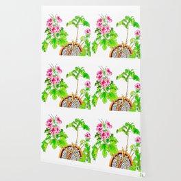 Pink Geraniums Wallpaper