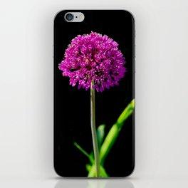 Allium in art iPhone Skin
