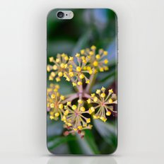 Wild Ivy iPhone & iPod Skin