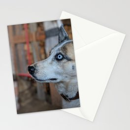 Dog by Kevin Merkel Stationery Cards