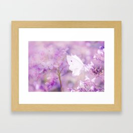 Butterfly :: White Violet Framed Art Print