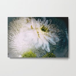 Frozen Pure Metal Print