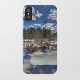 Early Spring Marsh iPhone Case