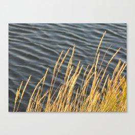 Saltmarsh Canvas Print