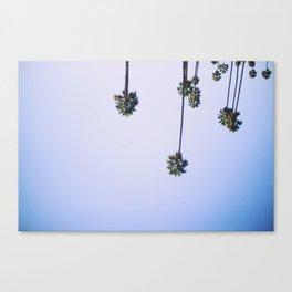 palmtrees x Canvas Print