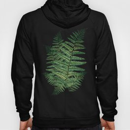 Among the Fern in the Forest Hoody