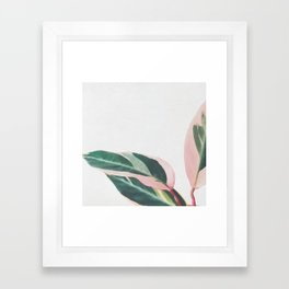 Pink Leaves II Framed Art Print