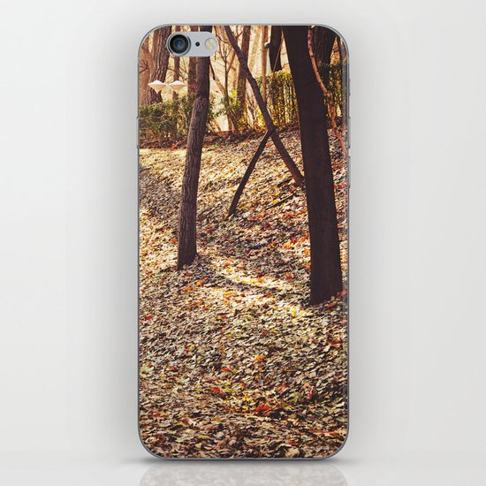 Bed of Leaves iPhone & iPod Skin