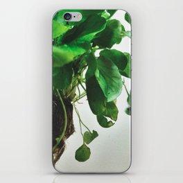 The Avant-Garden Forage || Watercress  iPhone Skin