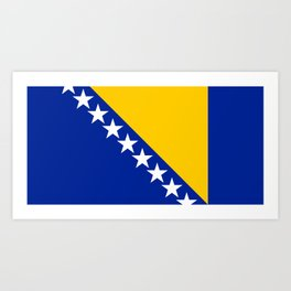 Bosnia And Herzegovina Flag Art Print