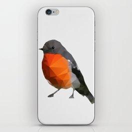 Geo - Robin iPhone Skin