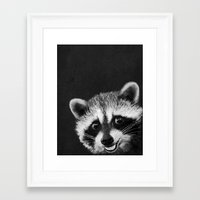 raccoon Framed Art Prints featuring Raccoon  by Laura Graves