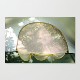 A Summer Dream. Canvas Print