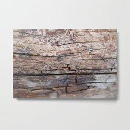 Drift Wood Metal Print