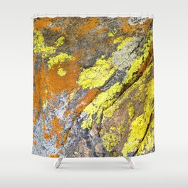 Watercolor Lichen 05, Golden Glows of the Rockies Shower Curtain