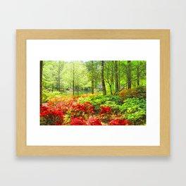 Callaway Gardens, Pine Mountain, Georgia Framed Art Print